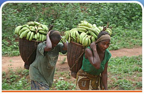 AMU Burundi